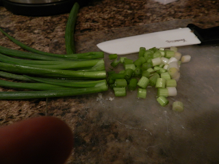 chopped onion, recipes