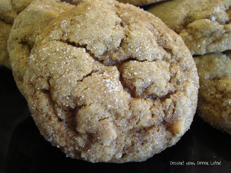 Dessert Now, Dinner Later!: Pumpkin Gingersnap Cookies