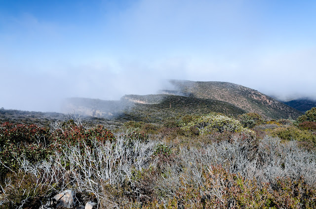 low cloud over major mitchell plateau