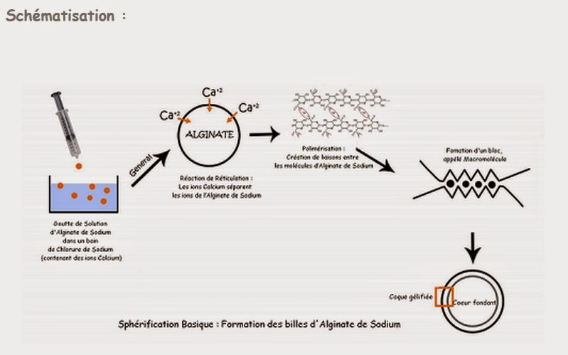 Espace cyber base emploi p m de folelli cuisine mol culaire for Spherification cuisine moleculaire