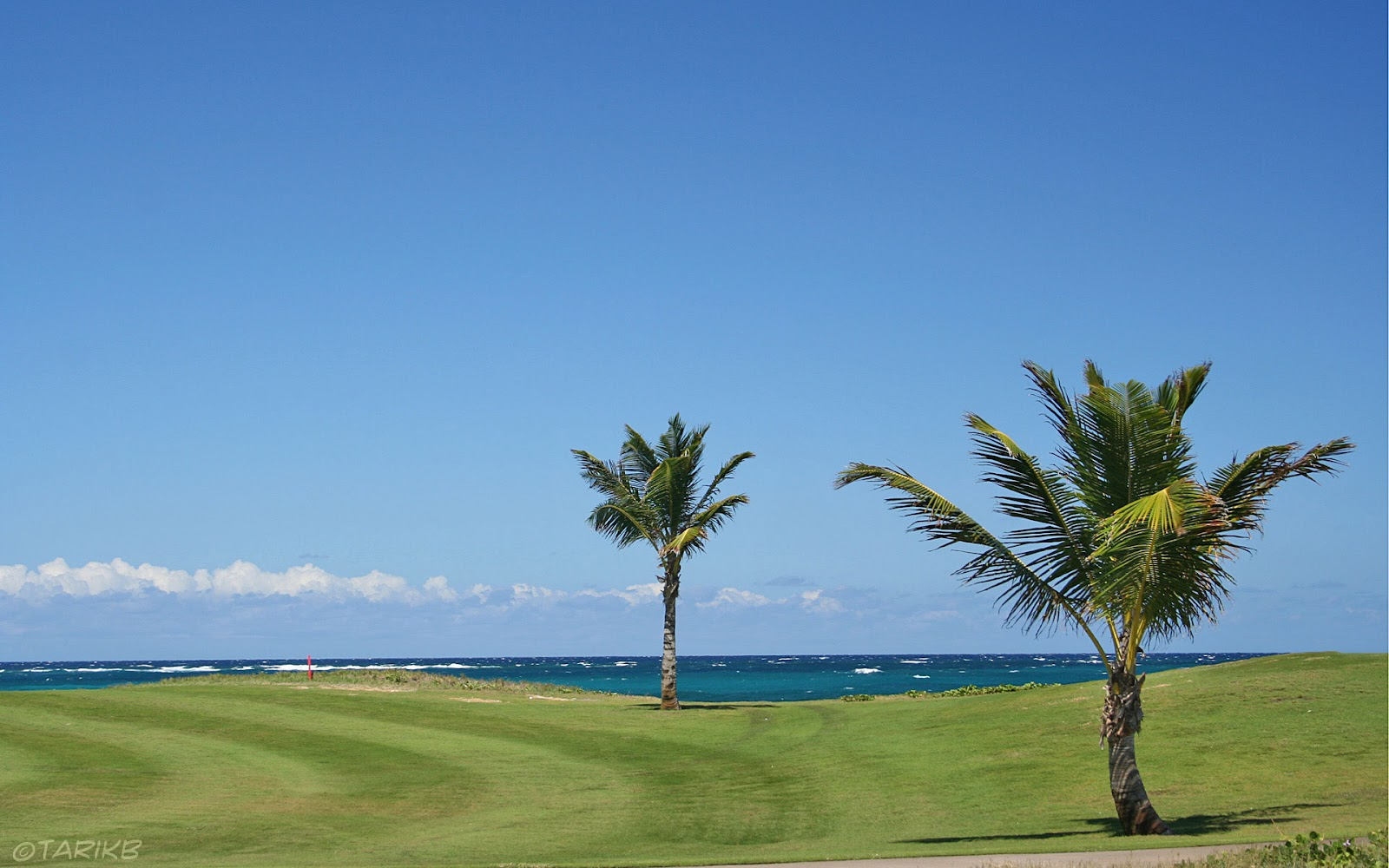 http://3.bp.blogspot.com/-sKYr28xPc20/UCYuZ8L8JfI/AAAAAAAAMKM/DxB45AxvxBc/s1600/golf-course-on-beach.jpg