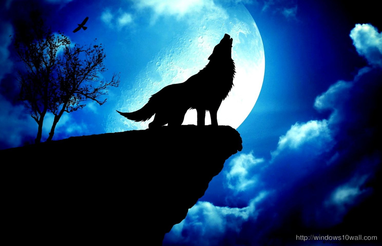 Wolf Under Blue Moon Stunning HD Wallpaper – windows 10 Wallpapers
