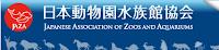 http://www.jaza.jp/index.html
