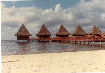 Tahiti-Bungalows Over the Water