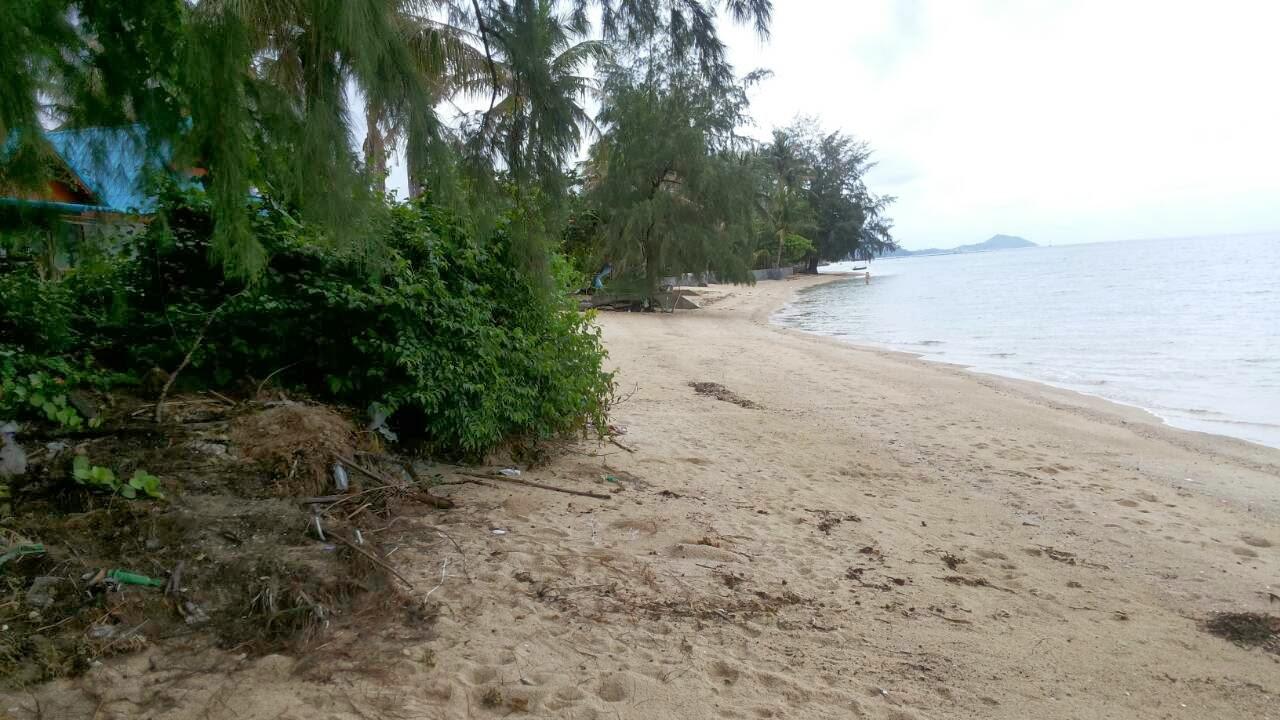 ทีดินติดชาย เกาะพงัน