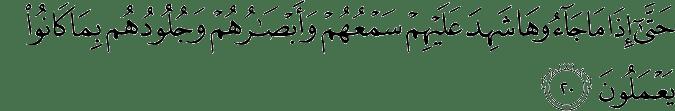 Surat Fushshilat ayat 20