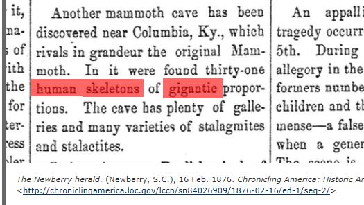 1876.02.16 - The Newberry Herald