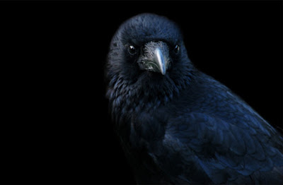 "SCARY! Edgar Allan Poe's ""THE RAVEN"" read by Edgar Oliver - YouTube"