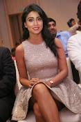 Shriya Saran Glam pics-thumbnail-4