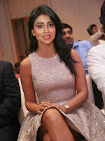 Shriya Saran Glam pics at SIIMA press meet-cover-photo