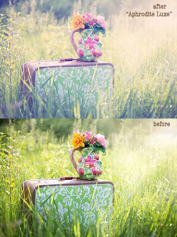 http://3.bp.blogspot.com/-sLrdKzRu48E/VXdNS2jU3yI/AAAAAAAAQPQ/vfmiSaGYGKg/s1600/summer-still-life-785231.jpg