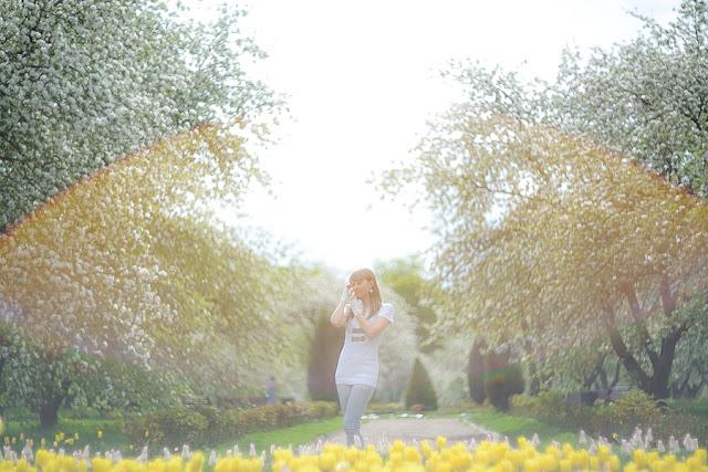 О жизни: Цветущие яблоневые сады в Коломенском