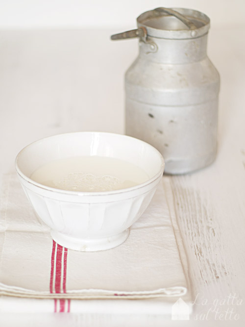 milk holder