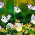 Ο χορός της πεταλούδας