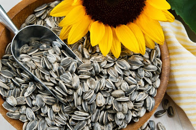 Get more calcium in a healthy way by these seeds mustard seeds rich in folic acid Sunflower seeds