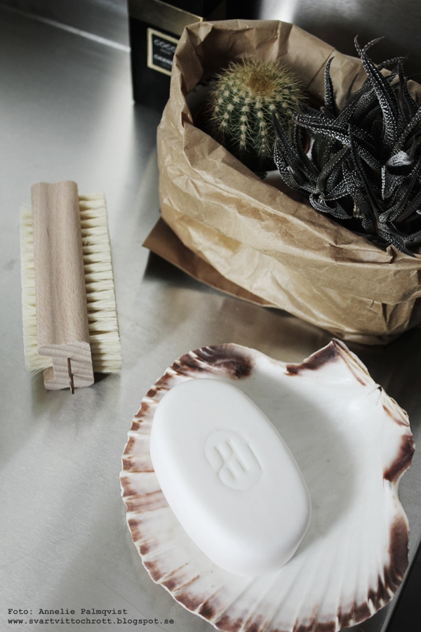 kaktus, kaktusar, papperspåse, papperspåsar, tvål, badrum, detaljer i badrummet, annelies design & interior, webbutik