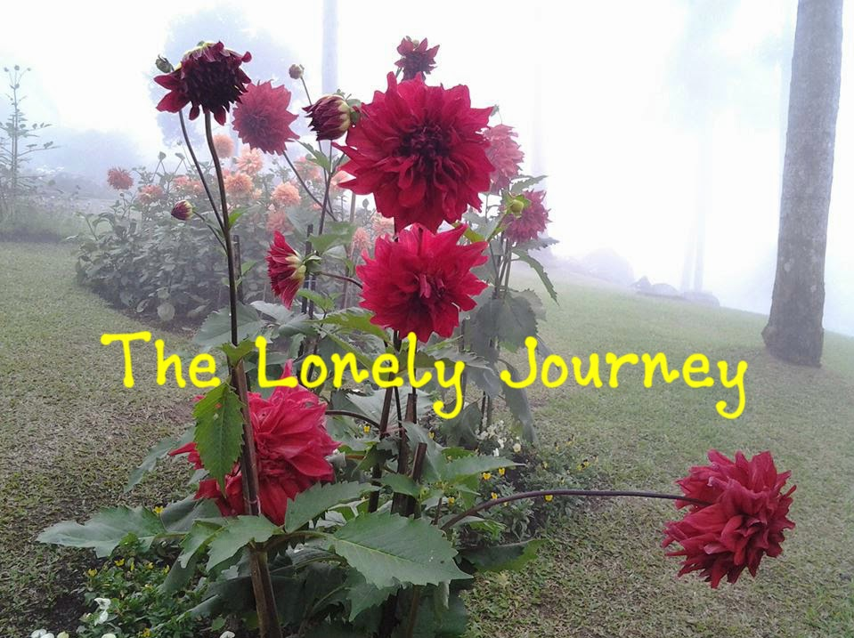 The Lonely Journey