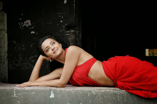 15Surveen Chawla in Spicy Transparent Red Saree and Bikini Must See Beauty HQ Pics