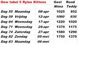 Gewichten tabel 5 (2 Kittens van Rylee)