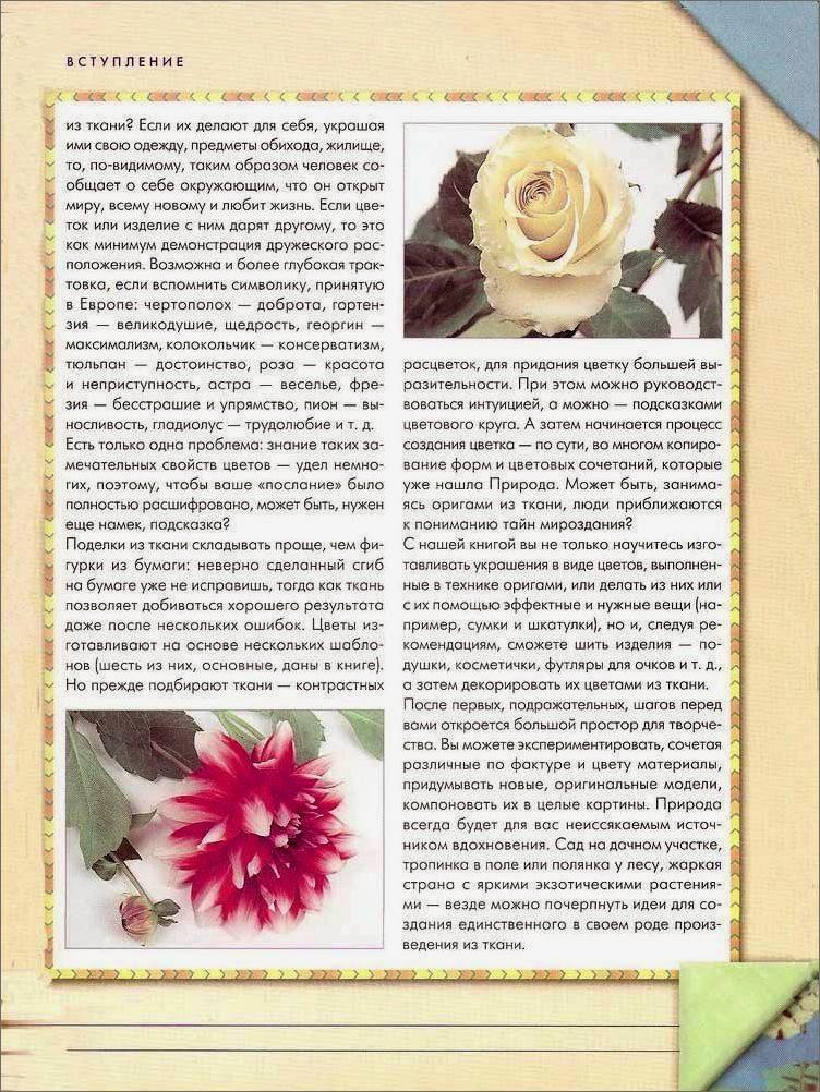online Group Theoretical Methods in Image Understanding