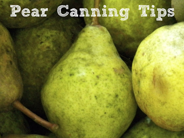 Pear Canning for the Rest of Us