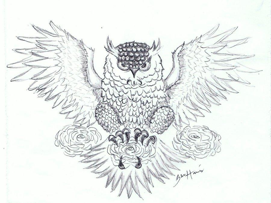 Desi Tattoo Design Gallery: Owl Tattoo Designs Ideas Photos Images ...