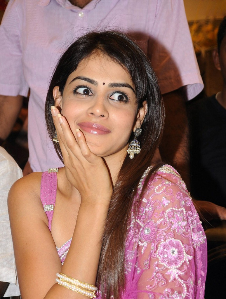 1 -  Genelia D'Souza Hot Photo Gallery