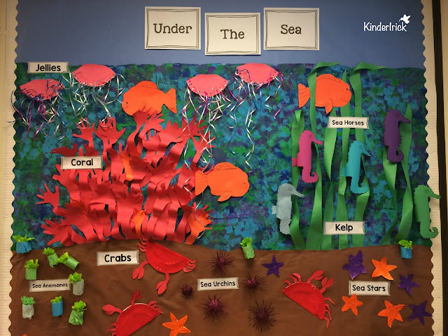 Ocean Invertebrates bulletin board