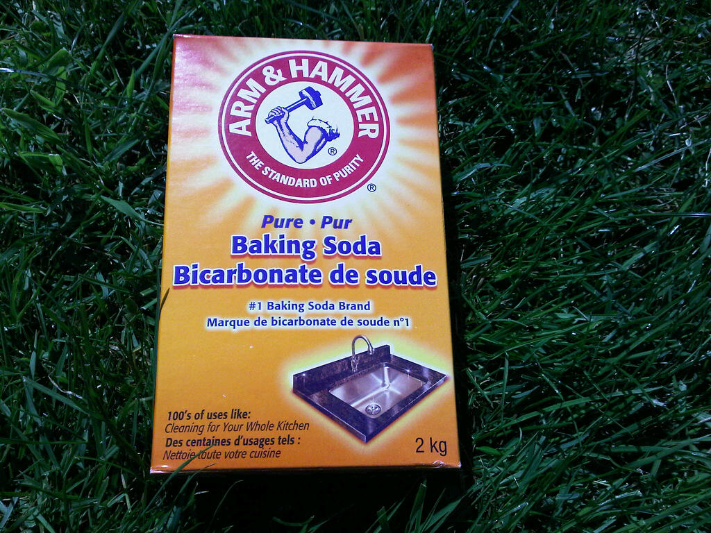 Baking Soda Kills Moss