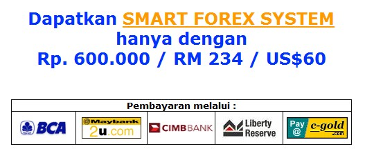 Smart forex system