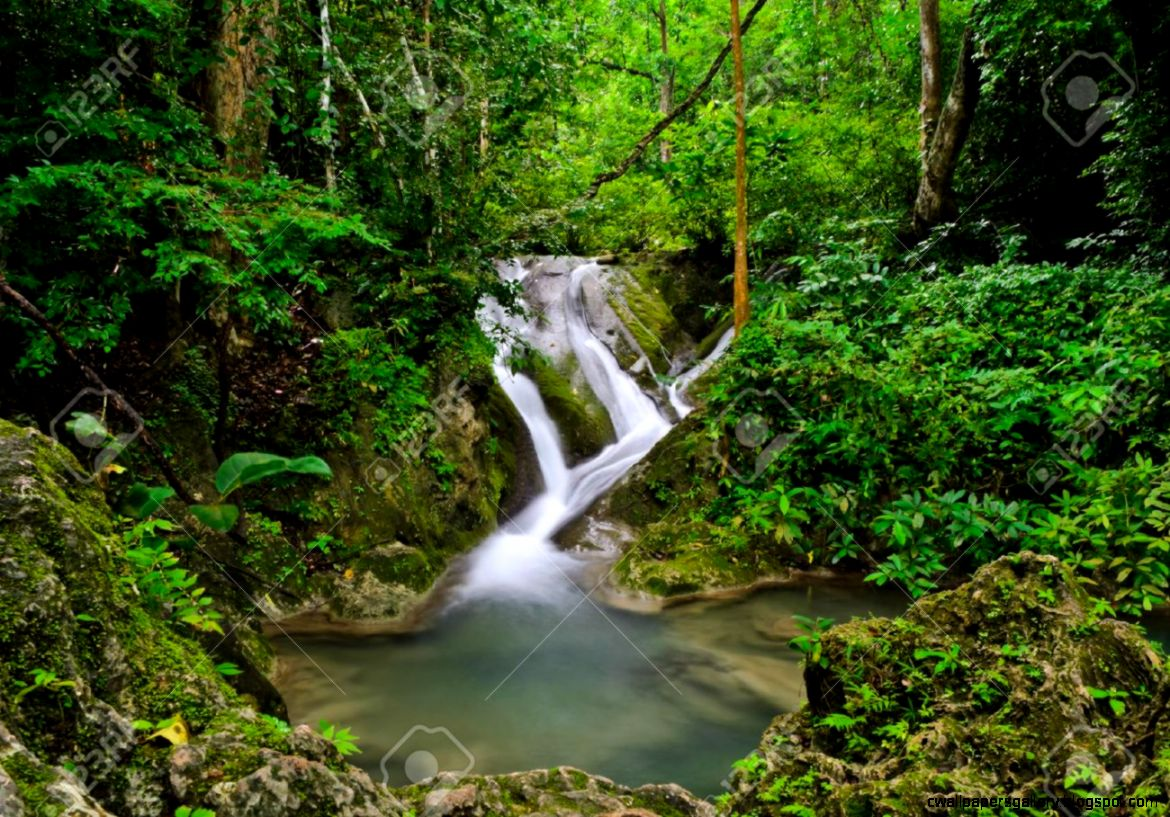 Landscape With Waterfall In Tropical Rain Forest Thailand Stock