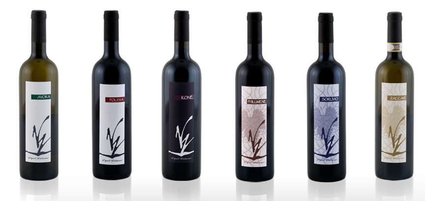 packaging vino grafica illustrazione