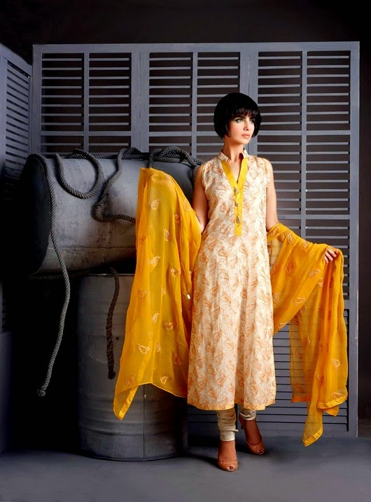 Image Embroidered Eid Collection
