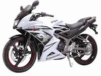 Nih Dia Kawasaki New Ninja 150RR
