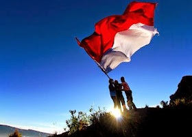Save Indonesia