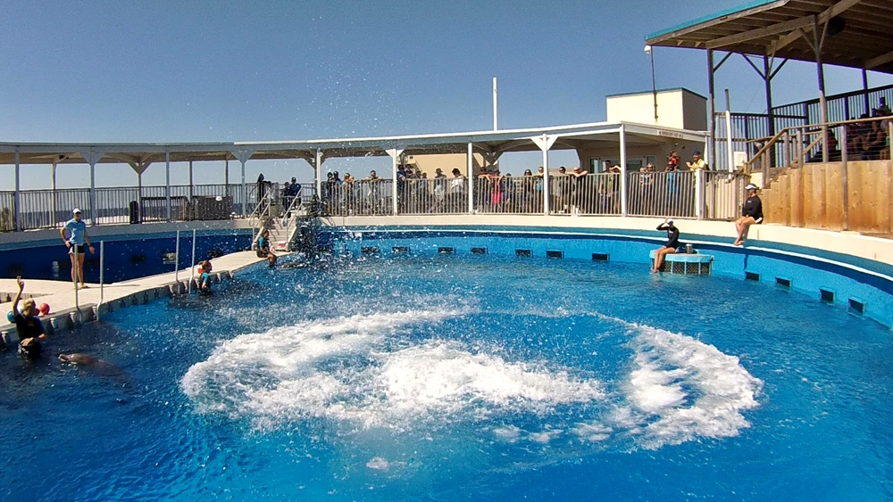 Gulfarium, Marine Adventure Park in Fort Walton Beach, Florida USA
