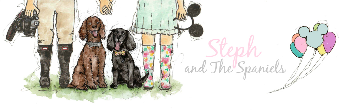 Steph and The Spaniels| Dog Friendly Lifestyle Blog
