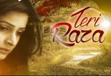 Teri Raza Zindagi Tv Upcoming serial wiki, Full Star-Cast and crew, Promos, story, Timings, TRP Rating, actress Character Name, Photo, wallpaper