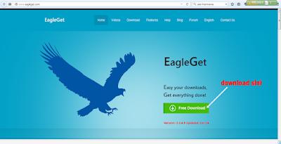 http://www.eagleget.com