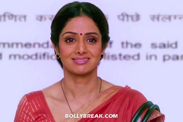 sridevi english vinglish - (11) - Bollywood Babes Interesting Characters