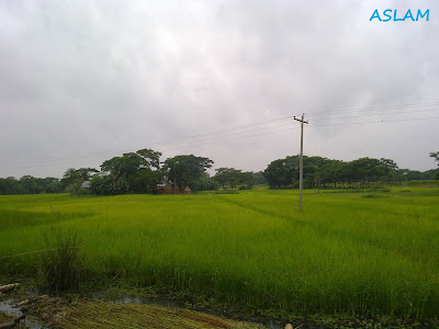 Beautiful nature in bangladesh