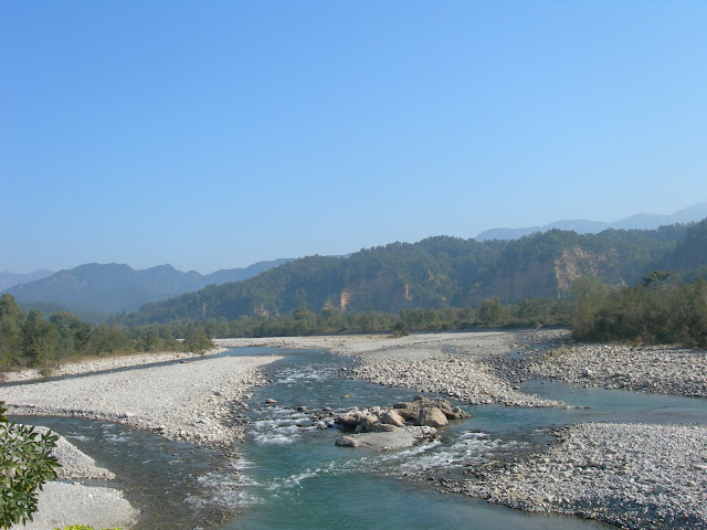river kosi in jim corbett national park