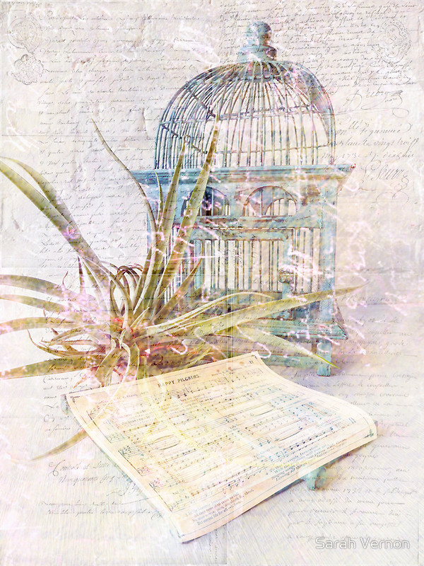 the tame bird was in a cage by rabindranath tagore