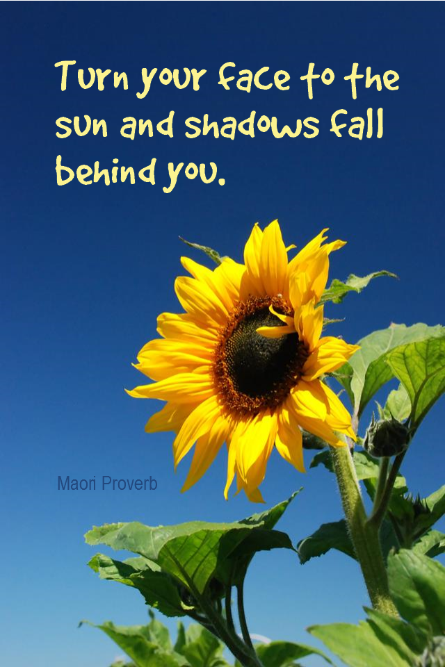 visual quote - image quotation for OPTIMISM - Turn your face to the sun and shadows fall behind you. - Maori proverb