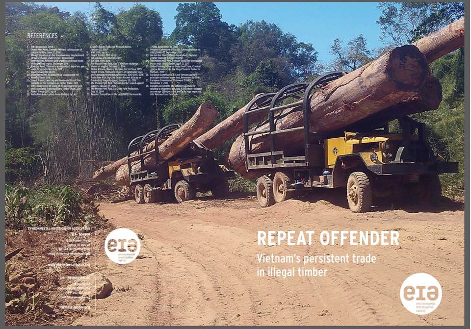 REPEAT OFFENDER: Vietnam's Persistent Trade in Illegal Timber