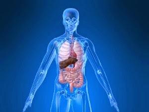 Manfaat puasa dapat mengeluarkan racun dalam tubuh