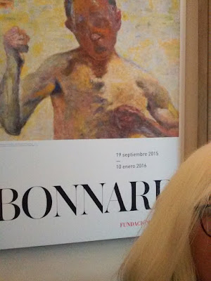 Pierre Bonnard, Fundacion Mapfre, Exposiciones temporales, madrid, pintura, blog de arte, voa gallery, yvonne brochard, victim of art, nabis,