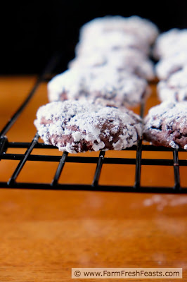 Roasted beets in a tender and chocolatey crinkle cookie.