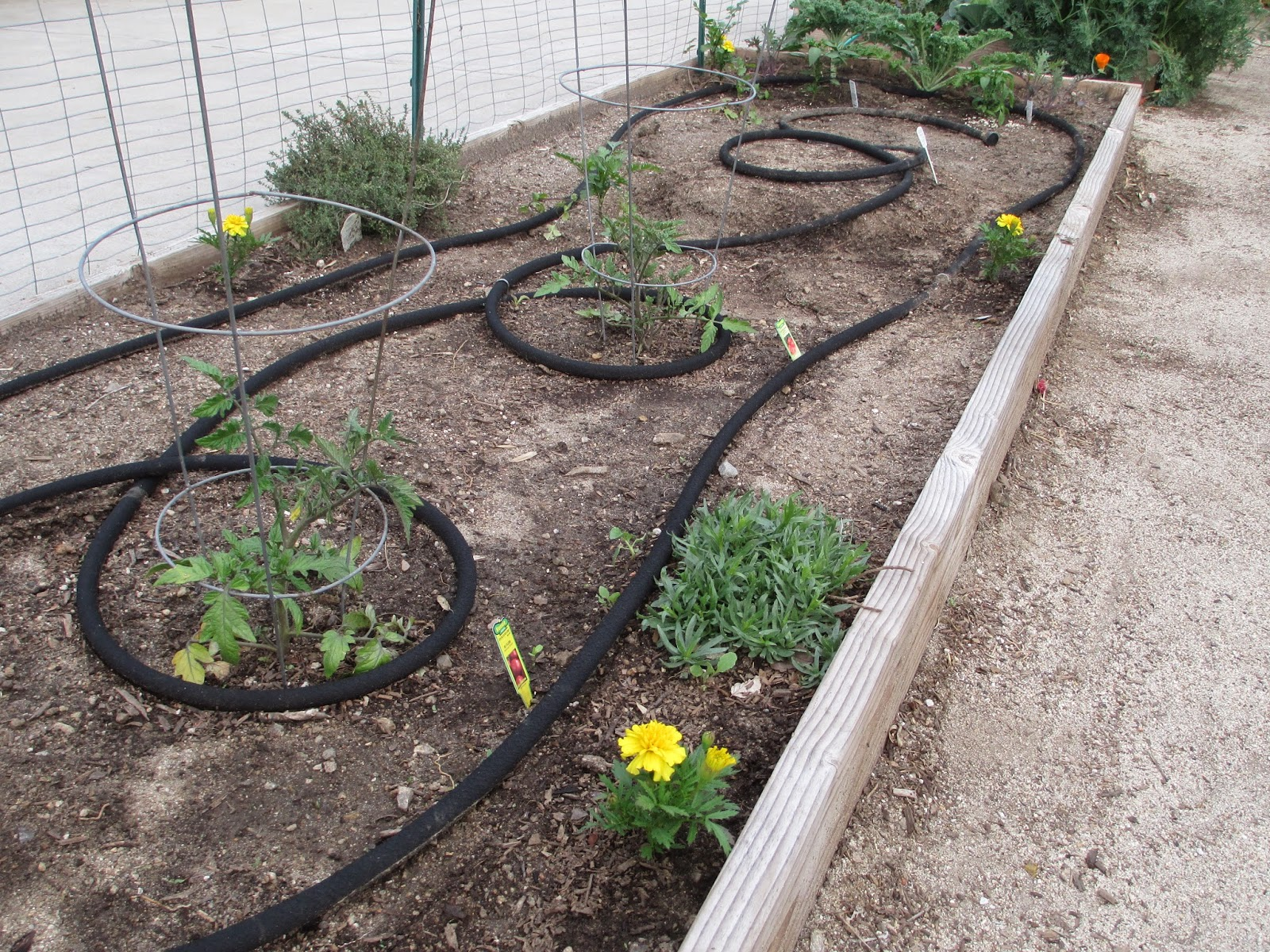 how to make a soaker hose irrigation system