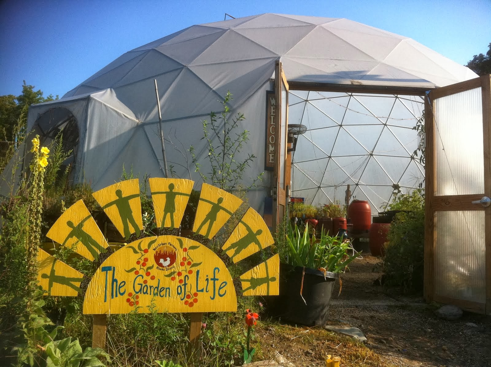 New Urban Farmers Blog